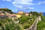 Trips  Grădina lui Napoleon