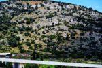 Trips  Halkidiki. Impresii și sfaturi despre o vacanță în Paradis