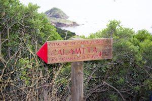 Insula elba (6)